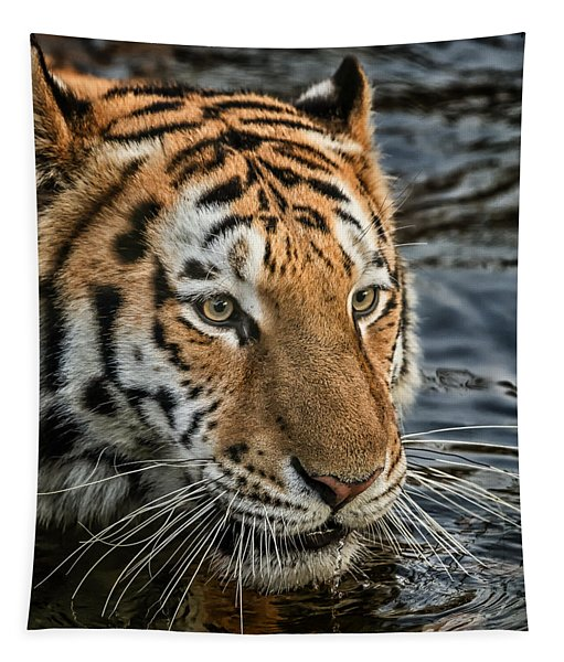 Swimming Tiger Tapestry