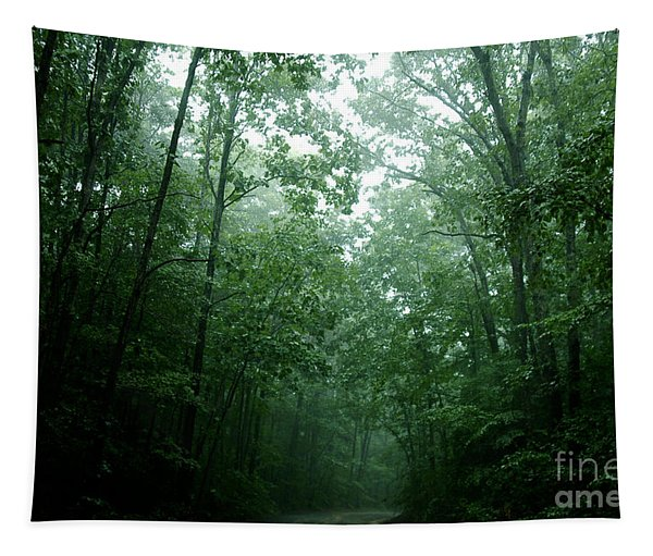 The Path Ahead Tapestry
