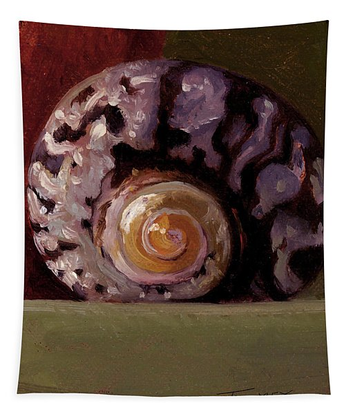 The Shape Of Nautilus, A Seashell Tapestry