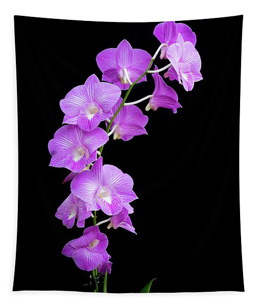 Vivid Purple Orchids Tapestry
