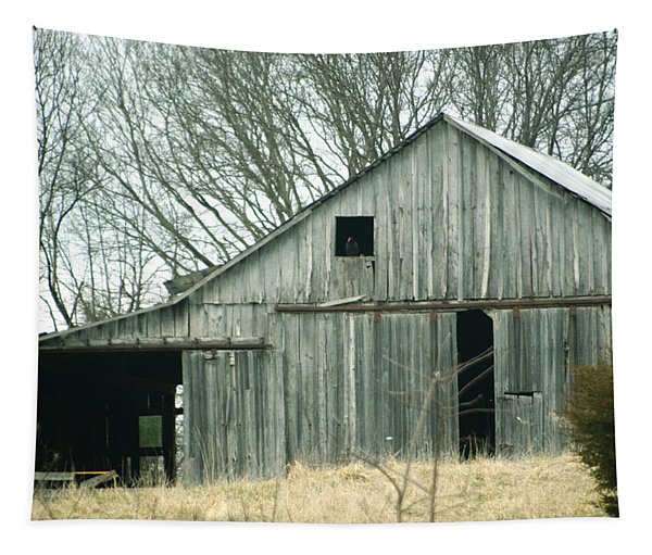 Weathered Barn In Winter Tapestry