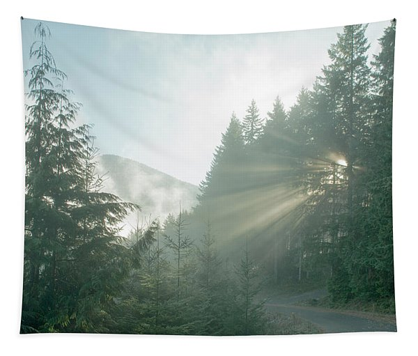 Where Will Your Road Take You? Tapestry
