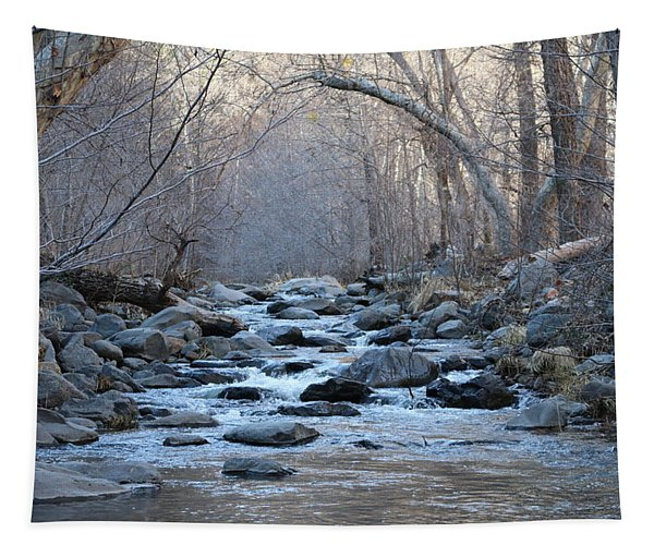 Tapestry featuring the photograph Winter Creek  by Christy Pooschke