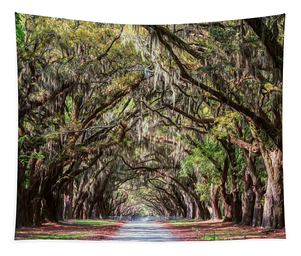 Wormsloe Plantation Oaks Tapestry