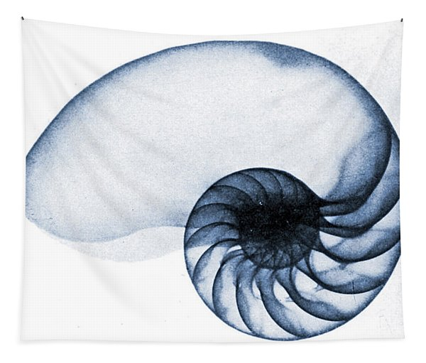 X Ray Of A Nautilus Tapestry
