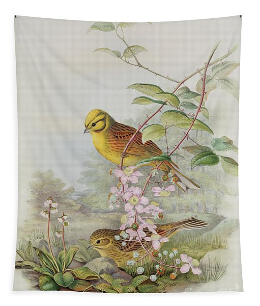 Yellowhammer Or Northern Flicker Tapestry