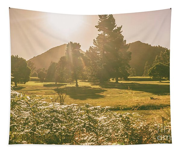 Zeehan Afternoon Meadows Tapestry