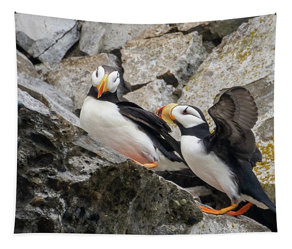 Horned Puffin Pair 2 Tapestry