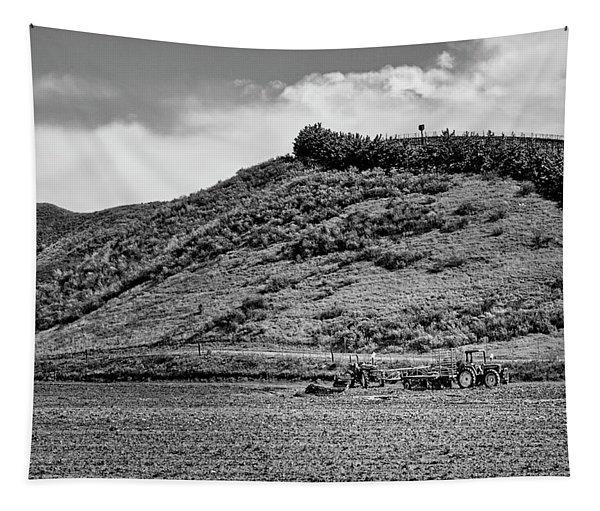 California Wine Yards Tapestry