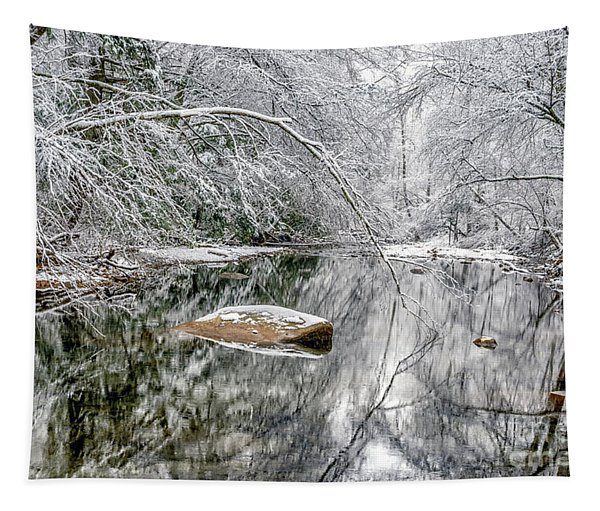 Snow Along Cranberry River Tapestry