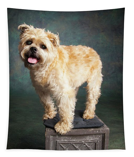 Portrait Of A Brussels Griffon Dog Tapestry