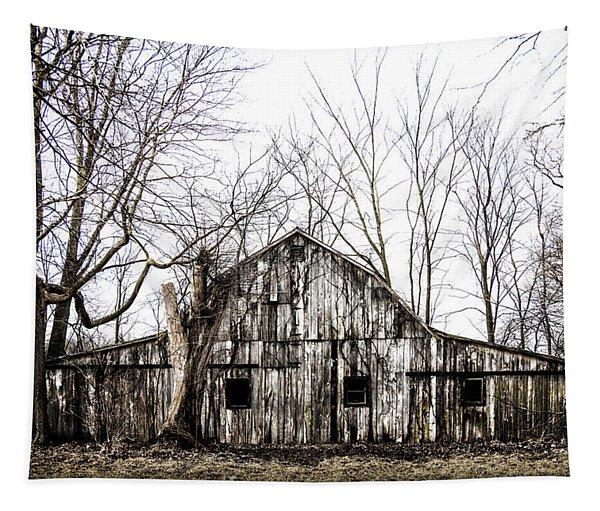Abandoned Barn Highway 6 V7 Tapestry