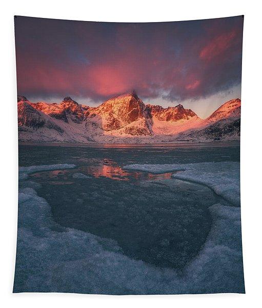 Arctic Winter Light Tapestry