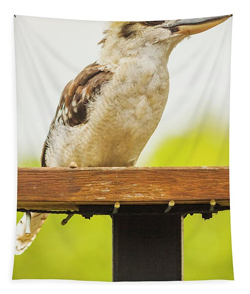 Australian Kookaburra Tapestry