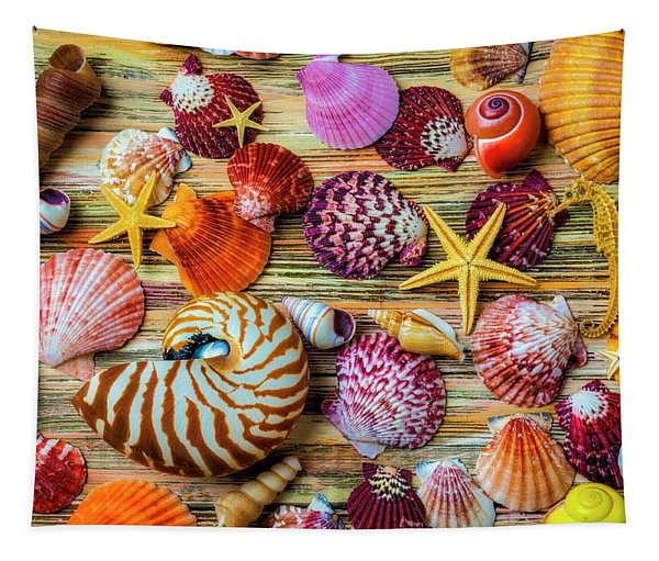 Beautiful Exotic Seashells Tapestry