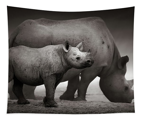 Black Rhinoceros Baby And Cow Tapestry