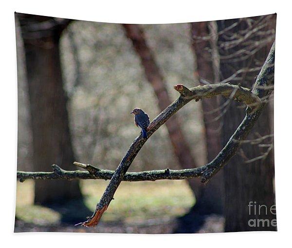 Bluebird, Bluebird, Sing To Me Tapestry