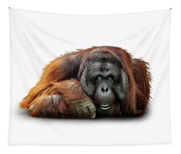 Bornean Orangutan Named Michael Tapestry