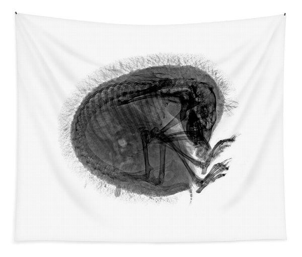 C037/9601 Tapestry