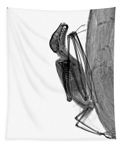 C037/9604 Tapestry