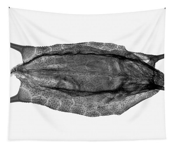 C038/4736 Tapestry