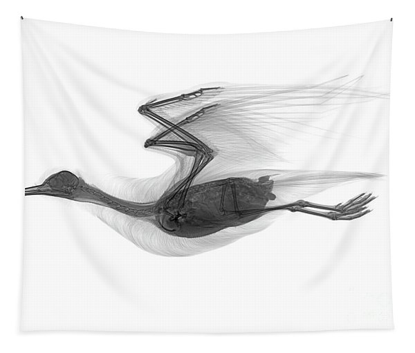 C039/0616 Tapestry