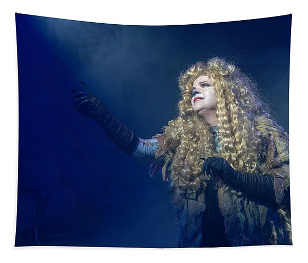 Cats Publicity Image  Tapestry