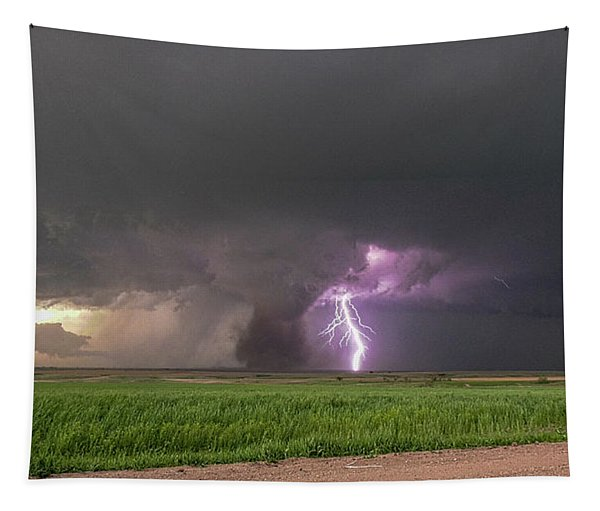 Tapestry featuring the photograph Chasing Naders In Nebraska 017 by Dale Kaminski