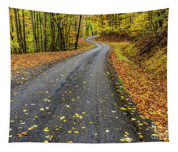 Curvy Country Road In Autumn Tapestry