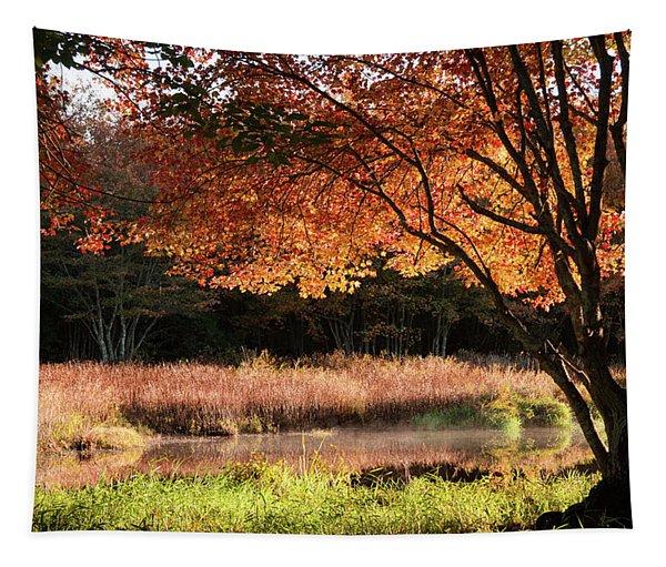 Dawn Lighting Rhode Island Fall Colors Tapestry