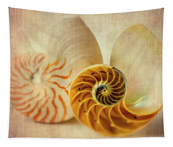 Double Nautilus Tapestry