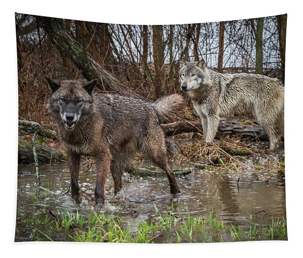 Double Trouble Tapestry