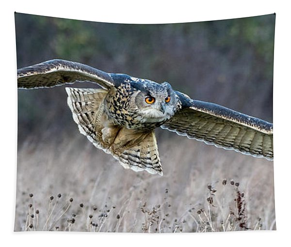 Eagle Owl Gliding Tapestry