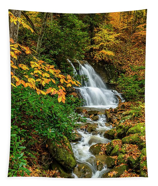 Fall Color Back Fork Waterfall Tapestry