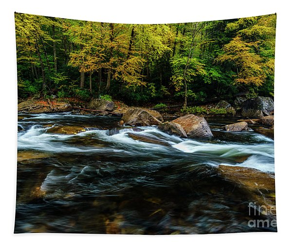 Fall Color On Cranberry River Tapestry