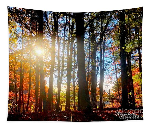 Fall In Conn Tapestry