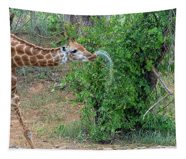 Giraffe Drinking Pattern Tapestry