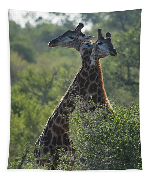 Giraffes Together Tapestry