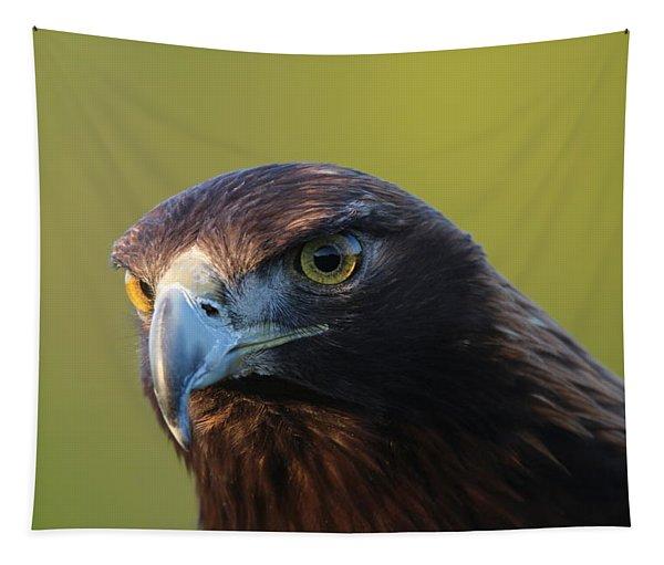 Golden Eagle 5151802 Tapestry