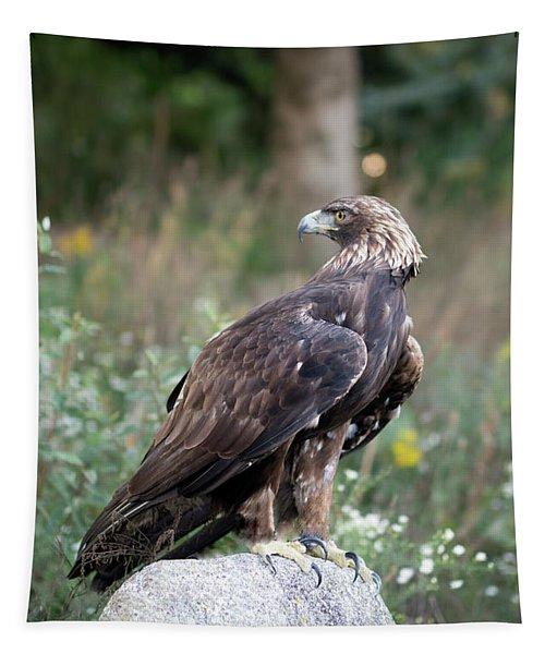 Golden Eagle On Rock 92515 Tapestry