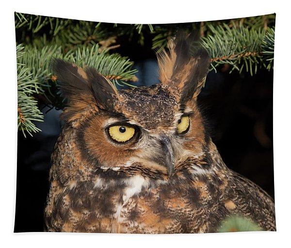 Great Horned Owl 10181802 Tapestry