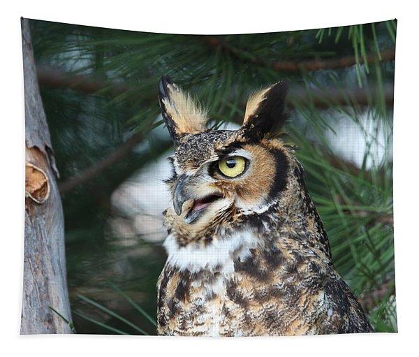 Great Horned Owl 5151801 Tapestry