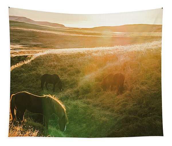 Icelandic Landscapes, Sunset In A Meadow With Horses Grazing  Ba Tapestry