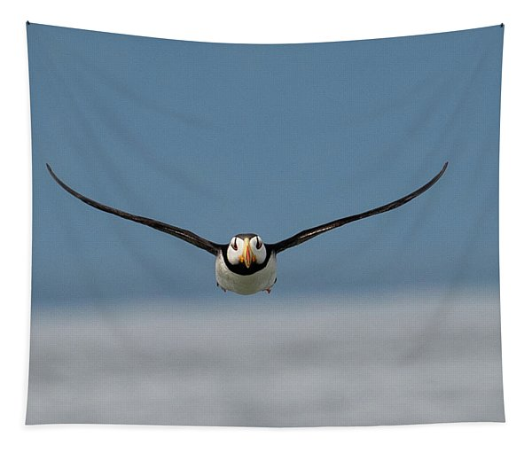 Incoming Puffin Tapestry