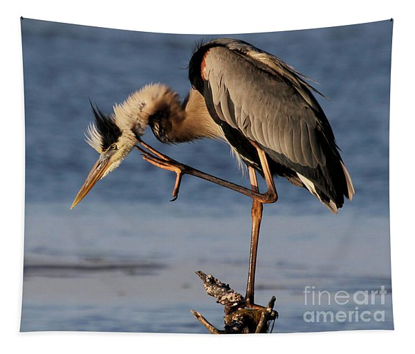 Itchy - Great Blue Heron Tapestry