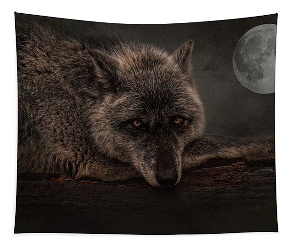 Its A Lonely Night  Tapestry