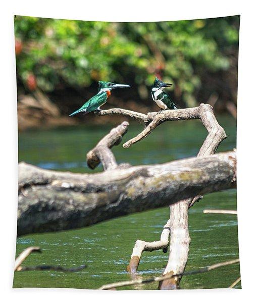 Kingfisher Pair Costa Rica Jungle Tapestry