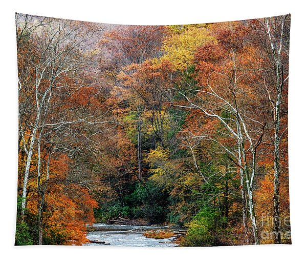 Lingering Fall Color Tapestry