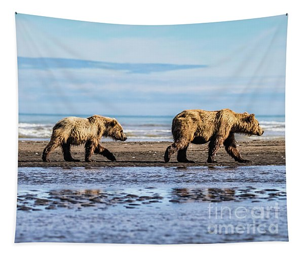 Mama Bear And Her Two Cubs On The Beach. Tapestry