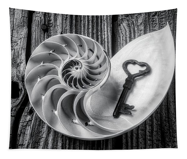 Nautilus Shell And Old Key Black And White Tapestry